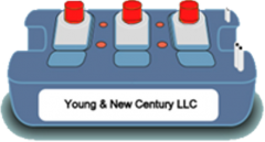 YOUNG & NEW CENTURY LLC