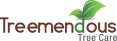 Treemendous Tree Care
