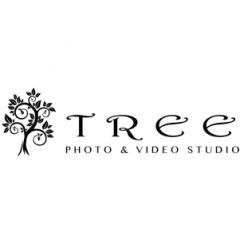 Tree Photo & Video Studio
