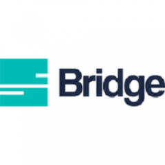 Bridge Business Consulting