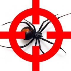 Pest Control Southside