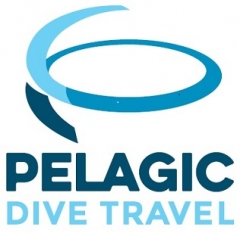 Pelagic Dive Travel Pty Ltd