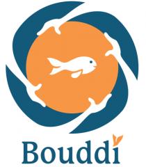 Bouddi Solutions