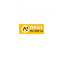 Feral Pest Control