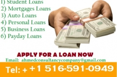 The Loan Consultant