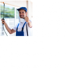Affordable Pest Control Townsville