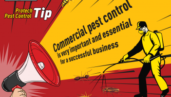 Commercial Pest Control gallery
