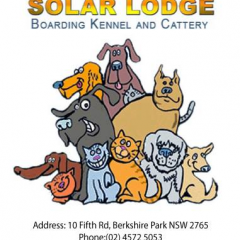 Solar Lodge Boarding Kennel and Cattery profile image