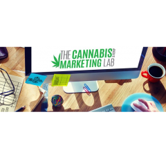 The Cannabis Marketing lab profile image