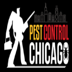 Pest Control Chicago profile image